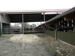 Aliments pour bétail